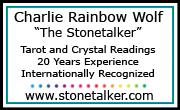 Charlie Rainbow Wolf