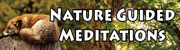 Nature Guided Meditations