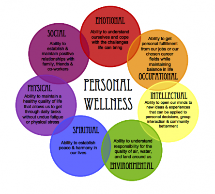 An Integrated Model of Wellness for Difficult Times