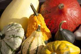 Pumpkins...
