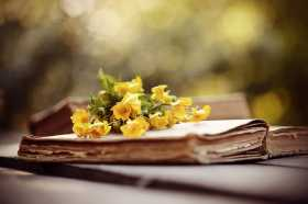 Buttercups: Truth, Lunacy and Faeries