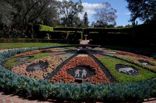 Harvesting Joy: A Hedgewitch's Herb Garden