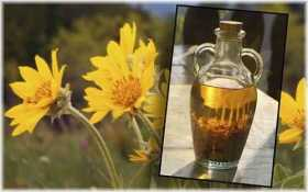 Arnica: The Homeopathic First Aid