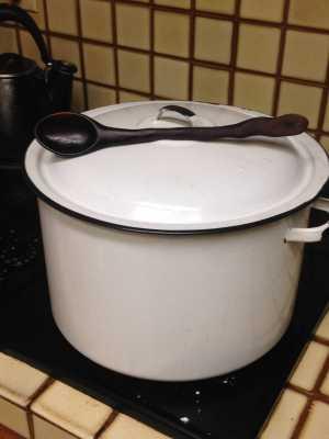 Pollyanna of the Apocalypse Makes Soup