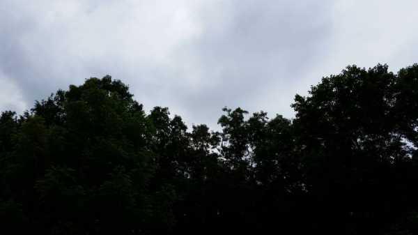 Storm of the Undine