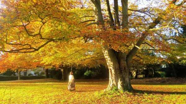 Samhain: Ancient and Modern