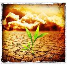 Pagan Events, Trash, and Environmentalism Part 2