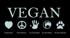 The Vegan Pagan: The Animals Themselves