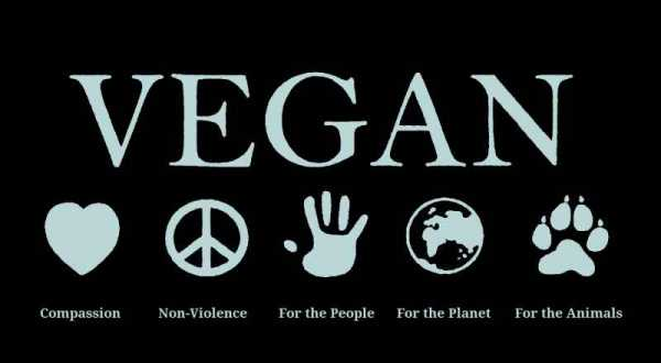 The Vegan Pagan: Introduction