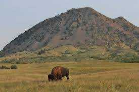 A Night on Bear Butte, Or: Can a Pagan, in Good Conscience, Go to the Black Hills?