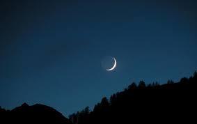Moon Horns