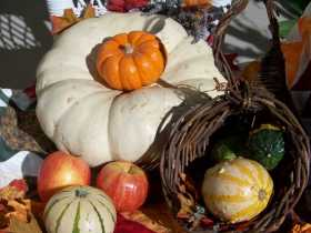 Time-Policing Our Holidays: Or, Why Americans on Social Media Are Hating On Pumpkin Spice