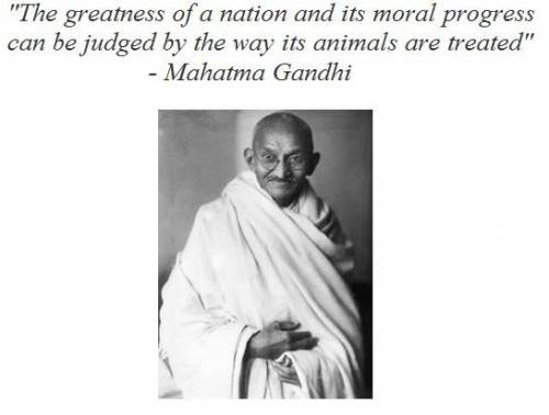 b2ap3_thumbnail_Gandhi-greatness_of_nations.jpg