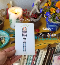 Taurus New Moon Reading: I Am Safe & Protected