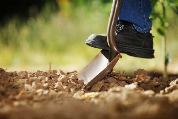 How Deep Should You Dig?