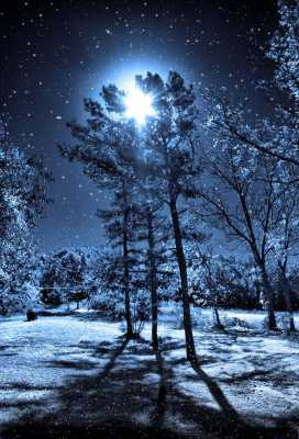 Birch Moon Meditation : for the January Full Moon