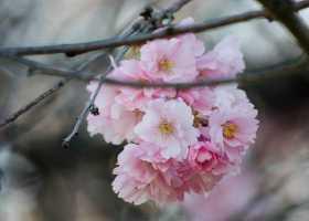 Your Spiritual Evolution: Four Transformative Teachings for the Spring Equinox
