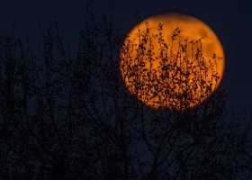 A Samhain Tale: Hecate and the Crossroads of Choice