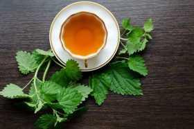 Hedge Witch Medicine: Nettle Tea