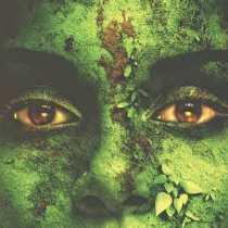 The Greening of Gaia