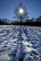 Shadow Solstice