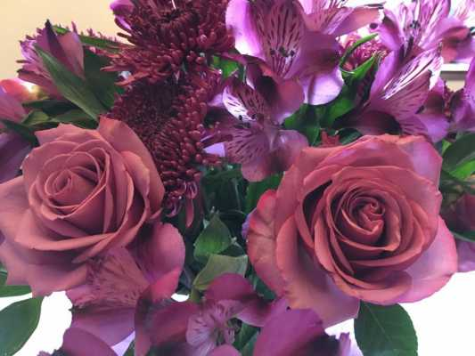 Pretty Purple Flowers and My Brain on Cancer