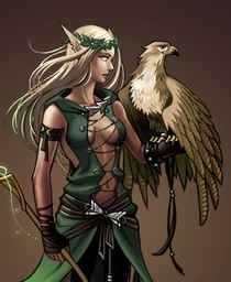 Desperately seeking Druid: The over-sexualised images in D&D fantasy games