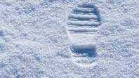 The Song of the Snow Shovel