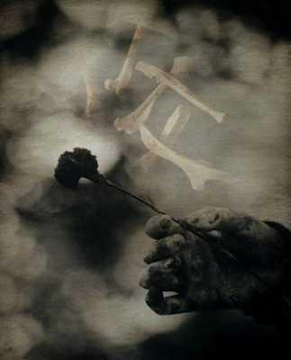 The Wisdom of the Bones: Samhain's Calling