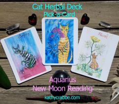 Aquarius New Moon Reading for Inspiration, Joy and Healing